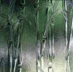 Bamboo textured glass